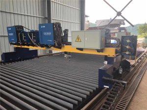 단단한 강철 H 광속 생산 라인 삭감을위한 두 배 드라이브 미사일 구조물 CNC 플라스마 절단기